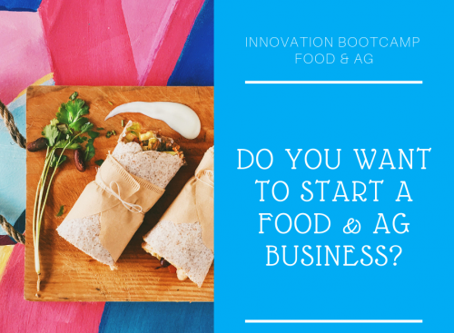 FLyer on Food and Ag Bootcamp. Do you want to start a Business?