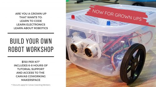 Build Your Own Robot for Grown Ups